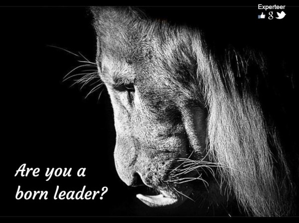Follow these leadership tips and learn how to take charge of your team!