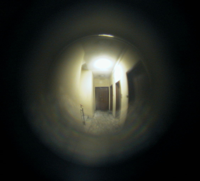 looking-through-the-peephole-1479653-639x581