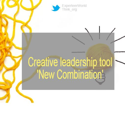 Leadership tools for senior managers new combination